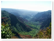 The Waimea Canyon and Kokee State Park